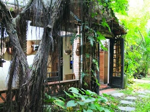 Đọ vườn nhà như trong cổ tích của Hồng Nhung - Mỹ Linh - ảnh 24
