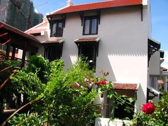 Đọ vườn nhà như trong cổ tích của Hồng Nhung - Mỹ Linh - ảnh 16