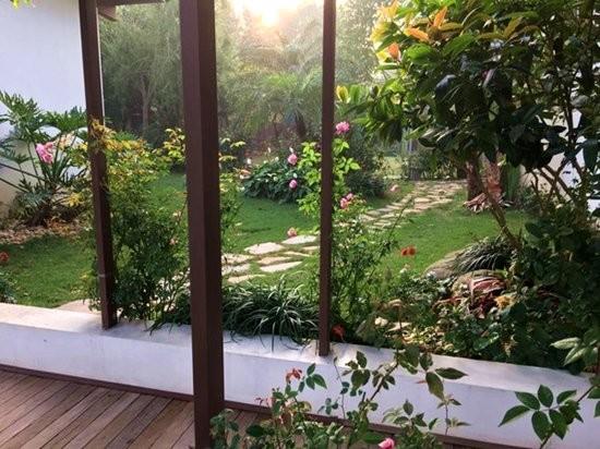 Đọ vườn nhà như trong cổ tích của Hồng Nhung - Mỹ Linh - ảnh 10