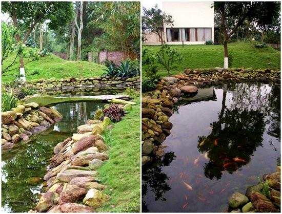 Đọ vườn nhà như trong cổ tích của Hồng Nhung - Mỹ Linh - ảnh 11