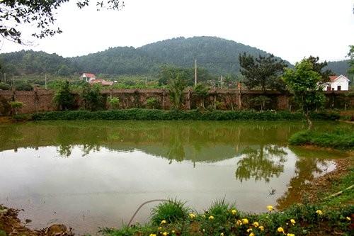 Đọ vườn nhà như trong cổ tích của Hồng Nhung - Mỹ Linh - ảnh 12