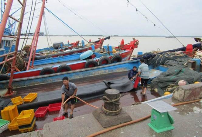 Trước giờ bão đổ bộ: Đê biển Bắc Trung Bộ chỉ chịu được bão cấp 10 - ảnh 9