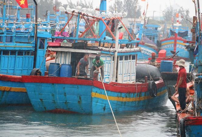 Ngư dân Đà Nẵng hối hả đưa tàu thuyền vào nơi trú bão - ảnh 1