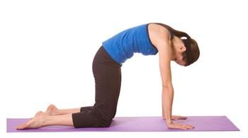 Tập yoga giúp chữa 4 bệnh phổ biến - ảnh 2