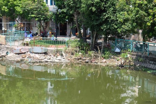 hồ tây, hà nội, ô nhiễm, cá chết - ảnh 1