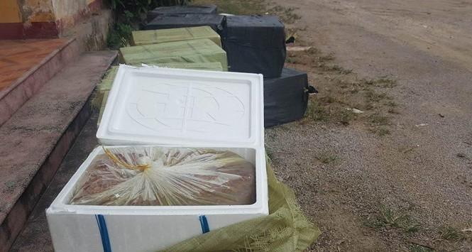 Kinh hãi phát hiện hơn 1 tấn nhộng tằm hôi thối trên xe khách - ảnh 1