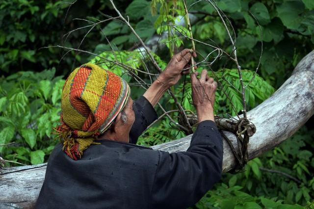 Ông lão 20 năm ở ẩn nơi rừng thẳm Quảng Ngãi - ảnh 9