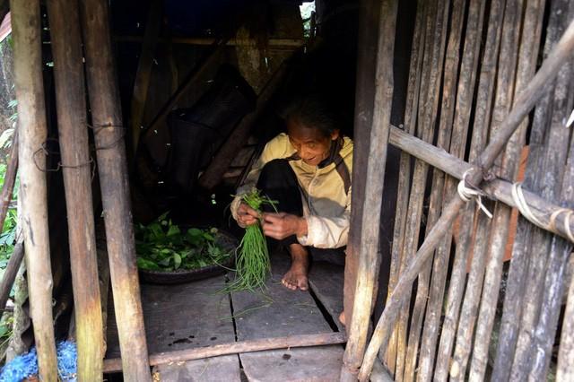 Ông lão 20 năm ở ẩn nơi rừng thẳm Quảng Ngãi - ảnh 5