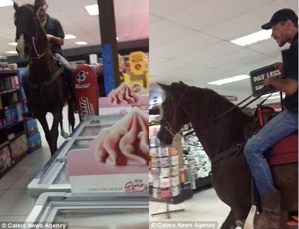 Cưỡi ngựa vào siêu thị mua sắm như chốn không người - ảnh 1