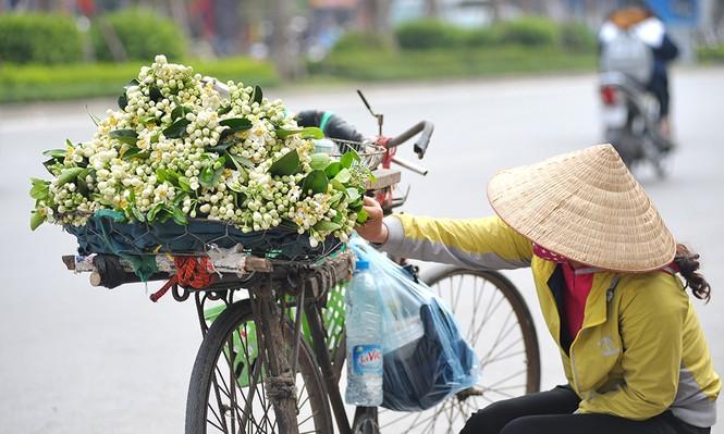 Đường phố Hà Nội ngát hương hoa bưởi - ảnh 5