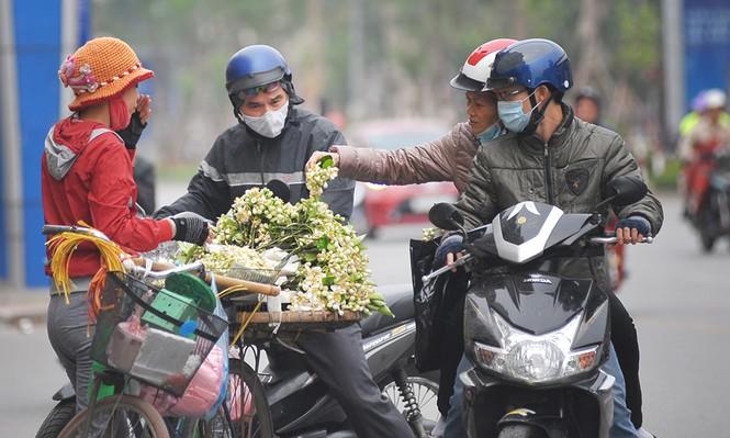 Đường phố Hà Nội ngát hương hoa bưởi - ảnh 6